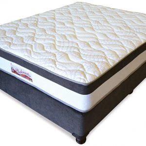 orthopedic backmaster bed